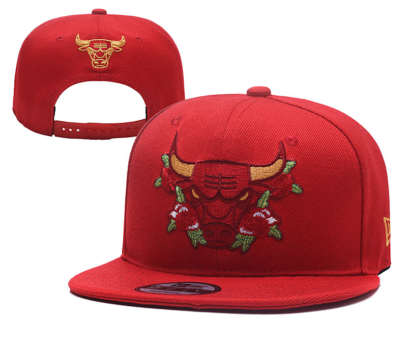 Bulls Team Logo Red Adjustable Hat YD
