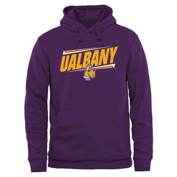 Albany Great Danes Team Logo Purple College Pullover Hoodie4