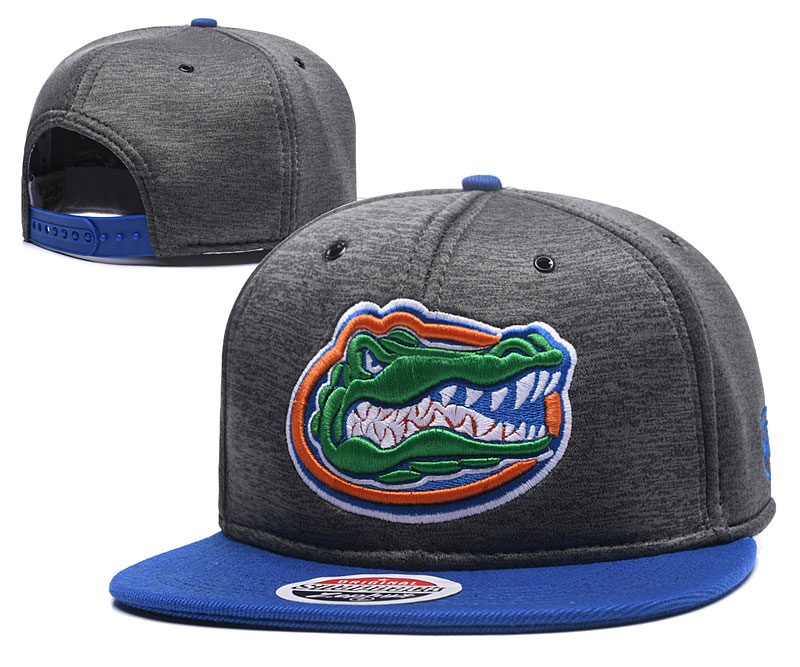 Florida Gators Team Logo Gray Ajustable Hat GS